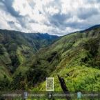 Vista del bosque camino a la catarta La Bella Encantadora